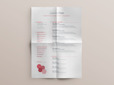 Free Resume template - vol. 2