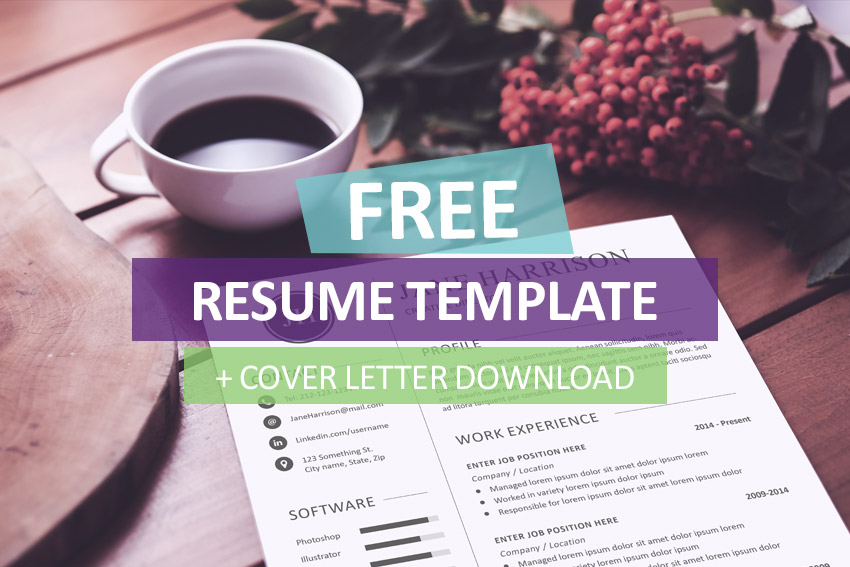 Resume Cover Letter Template Free Download  Sample Resume And